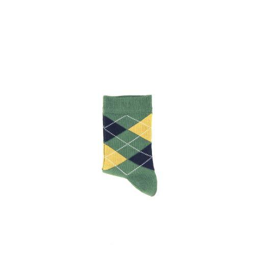 Falke  kousen groen 210155